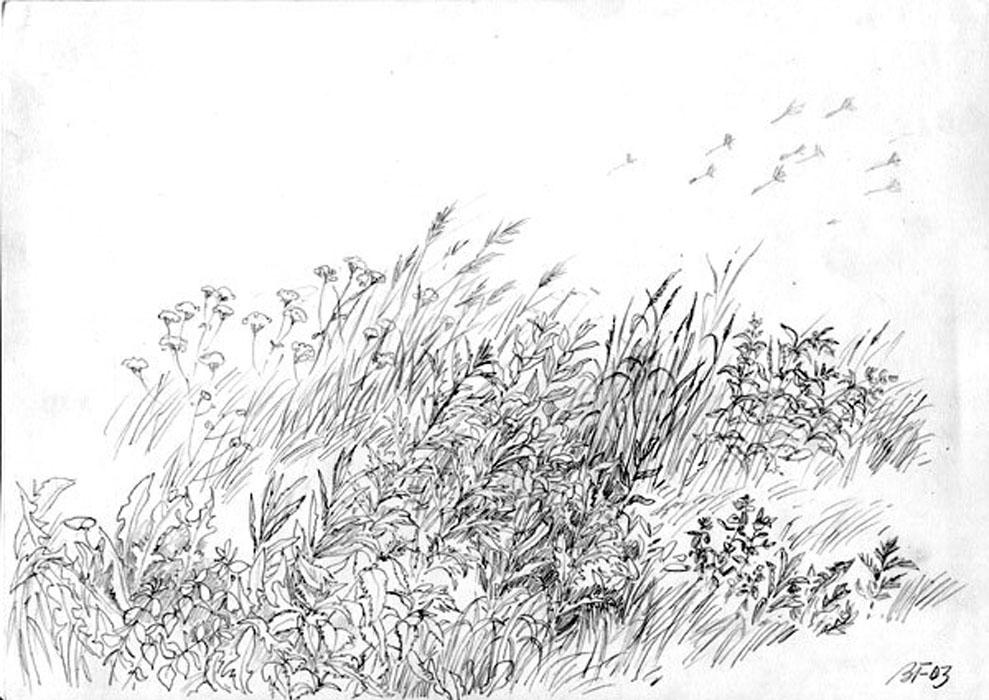 рисунок грозы: