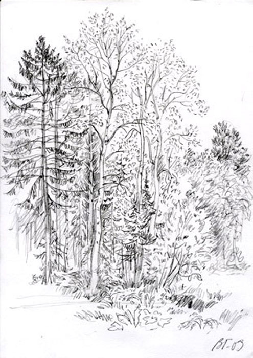 Рисунок карандашом 1987г